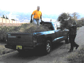volunteers hauled away trash